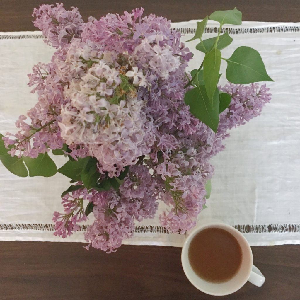 lilacs and tea - KatharineSchellman.com - little things, lately